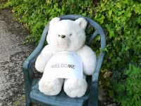 Legge Bear welcomes you to Legge House